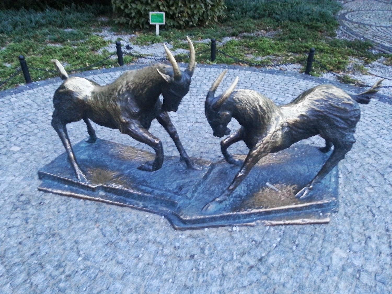 Poznań - pomnik koziołków